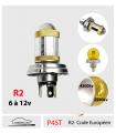 R2 LED 6 à 12v, P45T Code Européen Plug&Play - Série 5xl