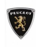 Kit LED COMPLET pour PEUGEOT